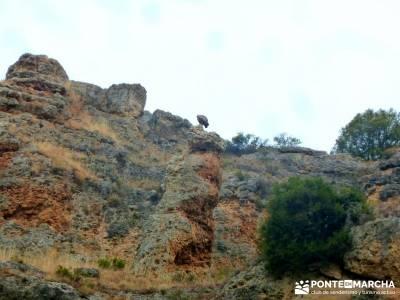 Hoces Río Duratón - Villa Sepúlveda; ruta por toledo trekking por europa